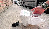 156 multas en un año por no quitar la caca de perro