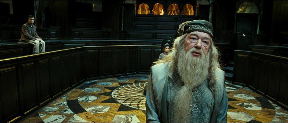 El profe preferido de Harry Potter es gay