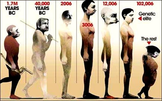 Escalas evolutivas