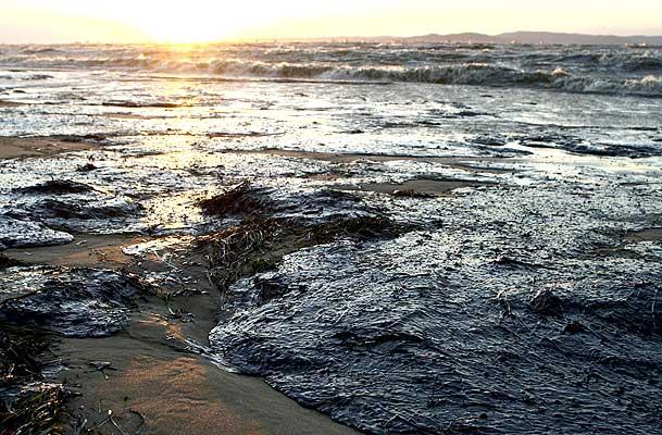 Derrame de petroleo en el mar Negro(imagenes lamentables)
