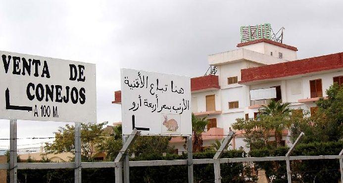 Un cartel de venta de conejos junto un club en Cartagena.