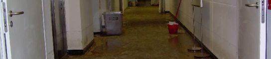 El Palau de les Arts Inundado