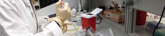 Científicos españoles curan un tipo de ceguera con el trasplante de células madre  (Imagen: ARCHIVO)