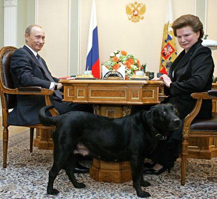 perra ruso