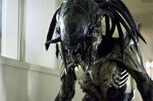 Aliens vs. Predator 2.