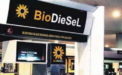 Dudas sobre los biocombustibles
