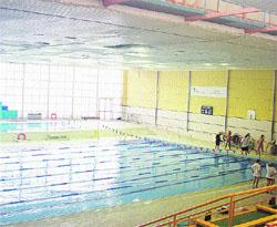 Ponen una red para que no caiga sobre la piscina el techo for Piscinas imd sevilla
