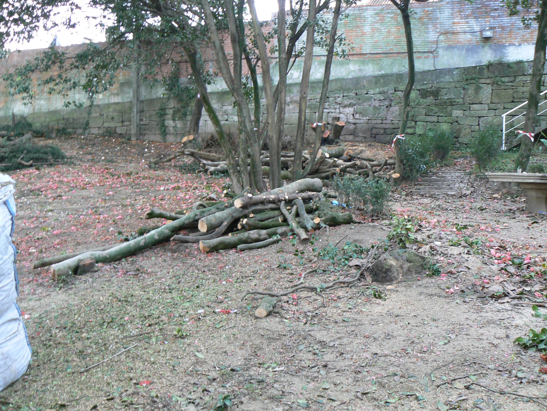El liceo casino de pontevedra se enfrenta a una pol mica for Limpieza de jardines madrid