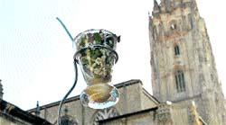90 restaurantes compiten por los tres mejores pinchos y tapas de Asturias