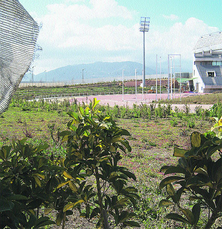 El estadio de atletismo, dos años tarde y en el abandono