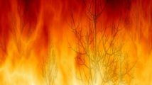 incendio 214