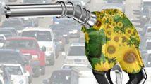 Biodiesel 214