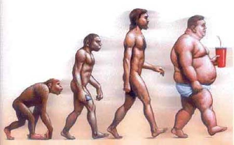 La mitad de la población puede ser obesa en 2030
