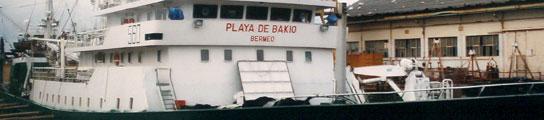 Playa de Bakio.