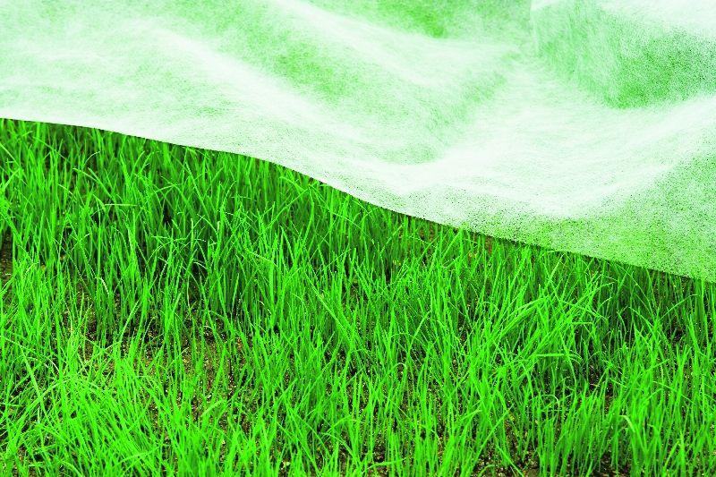 Soluciones Sostenibles Para Piscinas Y Jardines