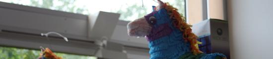 rare piñatas