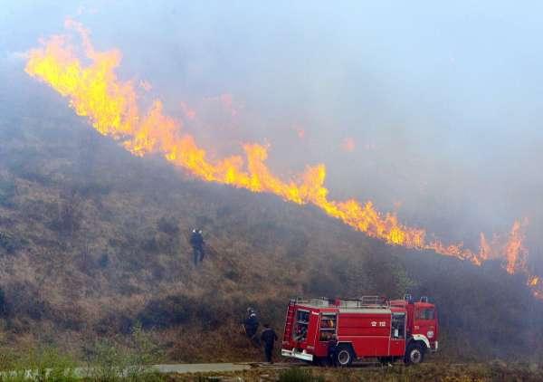 Incendio forestal en Navalmoral de la Mata