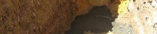 Hedor en Los Remedios (Sevilla)