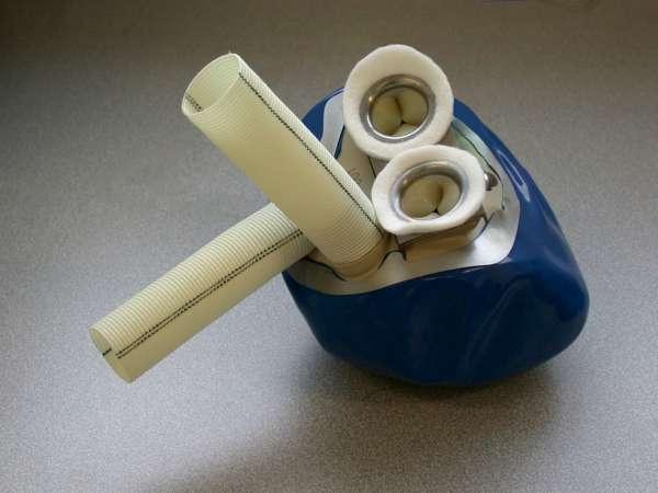 El primer corazón artificial fabricado con materiales orgánicos