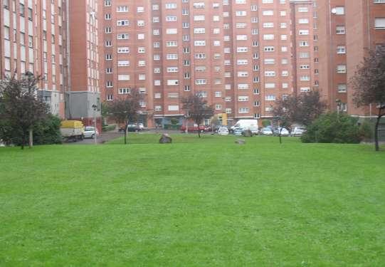 Un jardín en Nuevo Gijón