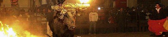 'El Guapo' protagoniza el toro júbilo.