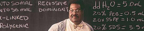 Eddie Murphy en 'El profesor chiflado'.