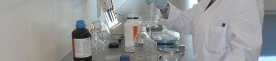 Una investigadora en un laboratorio del CSISP