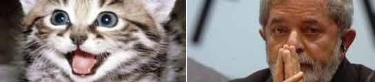 Un gato brasileño recibió durante meses un subsidio para pobres creado por Lula