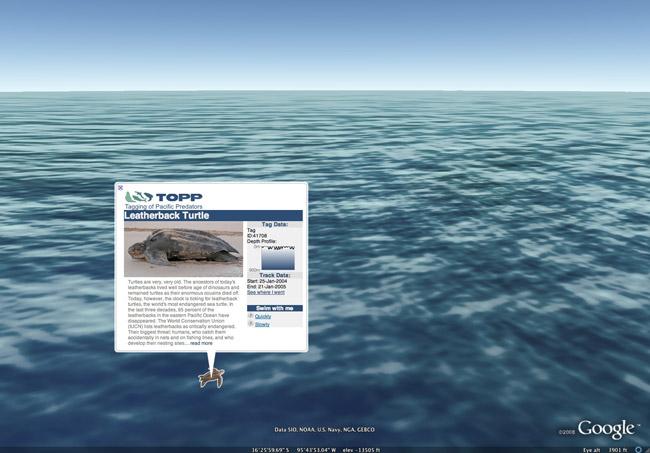 Google Earth se sumerge en los oc�anos