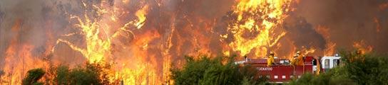 108 personas muertas y más de 100 aún desaparecidas por los incendios en Australia