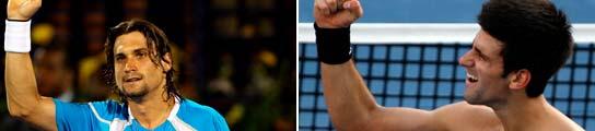 Ferrer y Djokovic preparan la Davis con la final del torneo de Dubai 935371