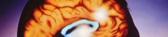 La cocaína cambia el funcionamiento de los genes en el cerebro, aseguran científicos   (Imagen: ARCHIVO)