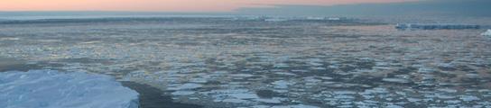 La crisis económica mundial relega el cambio climático a un segundo plano  (Imagen: ARCHIVO)