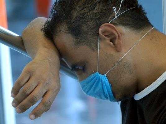 Gripe porcina en México.