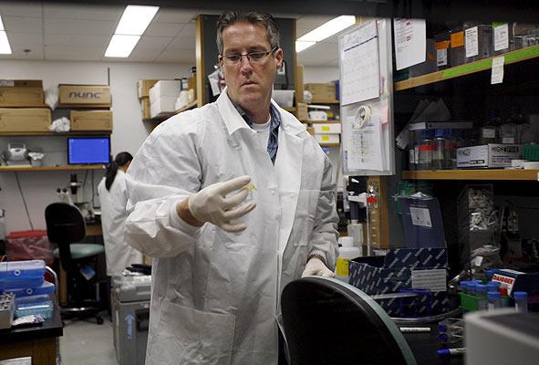 Vacuna contra la gripe A