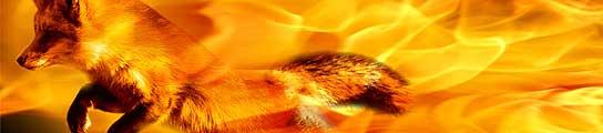 Así es el nuevo Firefox 3.5  (Imagen: TECH TRIBE)