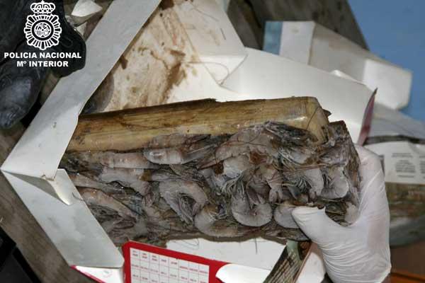 Cocaína camuflada bajo un cargamento de gambas
