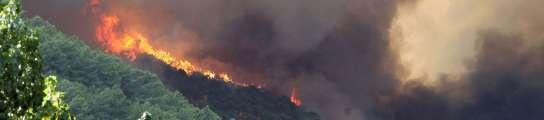 Fallece un hombre en un incendio intencionado en la provincia de Ávila  (Imagen: EFE)