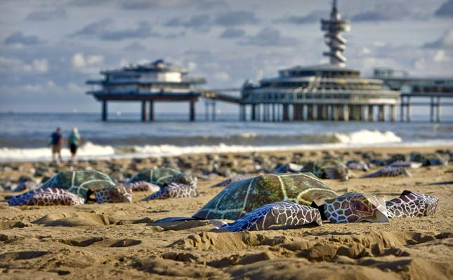 Protesta contra la compra de animales salvajes. Varios miembros del Fondo Internacional para el Bienestar de los Animales y su Hábitat (IFAW) han dispuesto unas tortugas de cartón en una playa de Scheveningen (Holanda). Esta iniciativa pretende llamar la atención sobre los turistas para evitar que compren animales salvajes como souvenir.