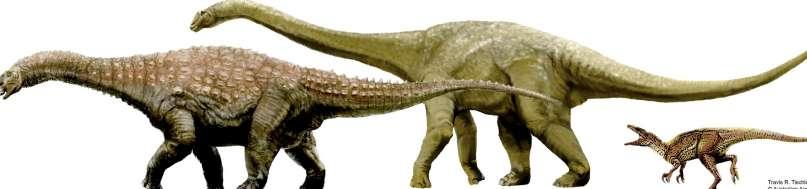 Nuevas especies de dinosaurios australianos