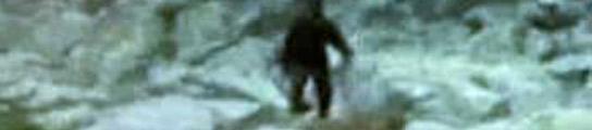 Graban en vídeo al 'Yeti Polaco'  (Imagen: EUROPICS)