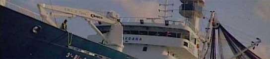 Los piratas que retienen el 'Alakrana' hacen una demostración de fuerza  (Imagen: ARCHIVO)