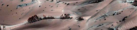 'Árboles' en Marte