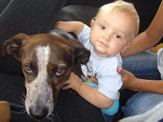 Las mejores mascotas para niños pequeños