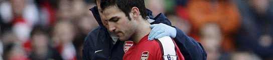 """Fábregas: """"No voy a irme del Arsenal, puedo decirlo mil veces, pero nadie me cree"""" 1052920_tn"""