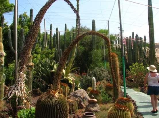 Los  corralitos Cocodrilos Park