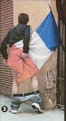 <p>Bandera de Francia</p>