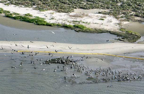 Barrera de protección en la costa de Luisiana.