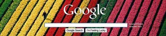 Google, más coqueto y customizado  (Imagen: Google)