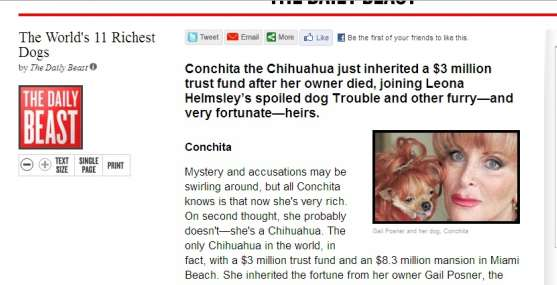Conchita, chihuahua millonaria